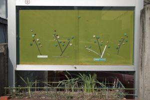 Planter, Japan, 2015-2018, 100 x 67 cm