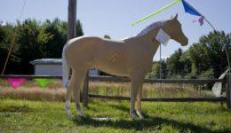 The Horse, Massachusetts, USA, 2013, 100 x 67 cm, print on HM Germ. Etch.